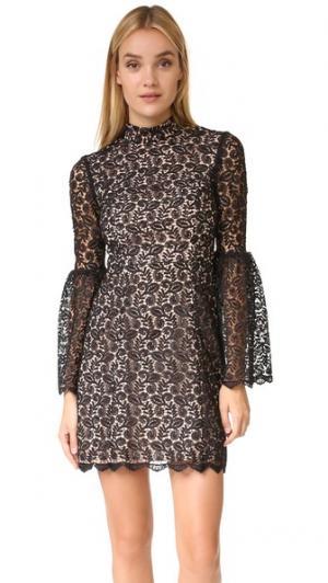 Кружевное платье с воротником под горло Jill Stuart. Цвет: голубой