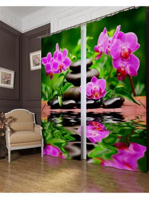 Фотошторы Арома Спа, Блэкаут Сирень. Цвет: фиолетовый, коричневый, розовый, серый, черный