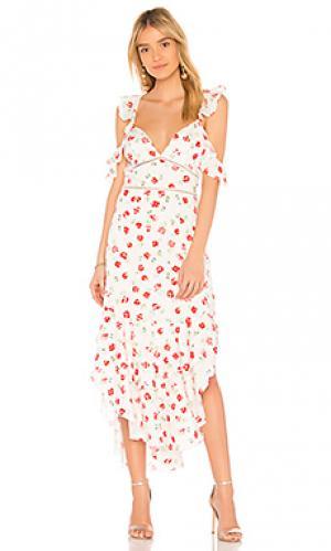 Платье kristin SAYLOR. Цвет: белый