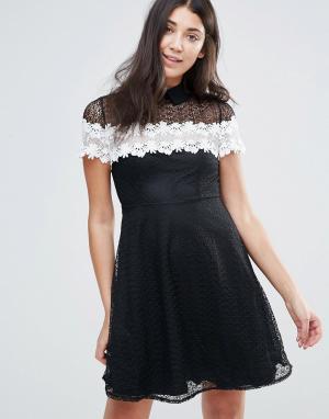 Jessica Wright Черно-белое короткое приталенное кружевное платье. Цвет: черный