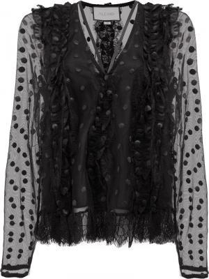 Кружевная блузка в горох Alexis. Цвет: чёрный