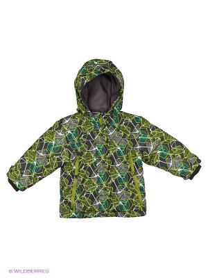 Куртка Hippo Hoppo. Цвет: салатовый