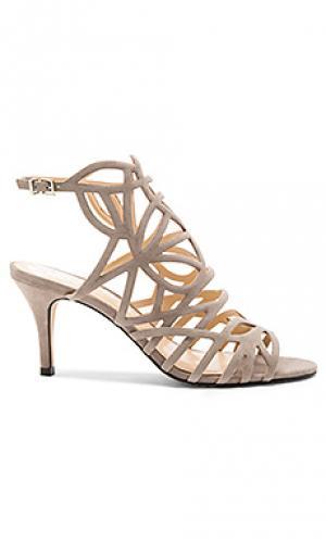 Обувь на каблуке pelena Vince Camuto. Цвет: серо-коричневый