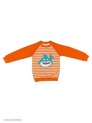 Свитшот БЕБИ БУМ Сиб. Цвет: оранжевый