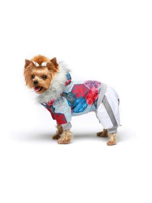 Комбинезон для собак Ай Да Пес. Цвет: голубой