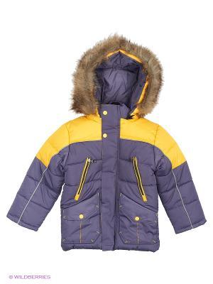 Куртка для мальчика Проша Disvey. Цвет: индиго