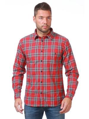Рубашка Catbalou. Цвет: красный