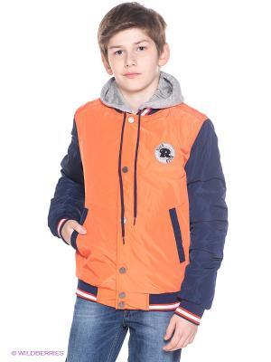 Куртка Orby. Цвет: оранжевый, темно-синий, серый меланж