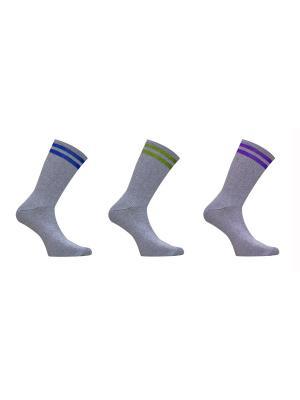 Носки Master Socks. Цвет: салатовый, голубой, сиреневый