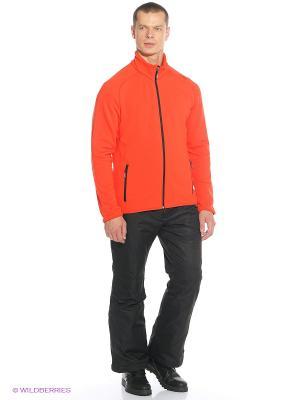 Кофта CMP. Цвет: оранжевый