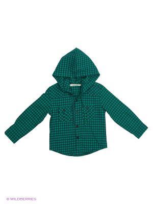 Рубашка Vitacci. Цвет: зеленый