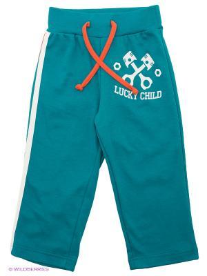 Брюки Lucky Child. Цвет: голубой
