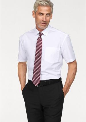 Комплект: рубашка + галстук STUDIO COLETTI. Цвет: белый, темно-серый