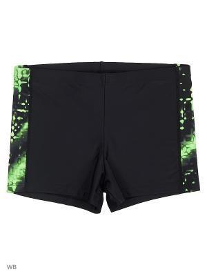 Плавки-шорты KICKERS. Цвет: черный, светло-зеленый