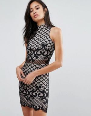 Parisian Облегающее кружевное платье. Цвет: черный