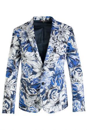 Пиджак Roberto Cavalli. Цвет: фиолетовый