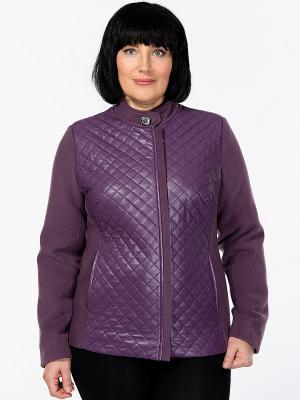 Куртка D`imma. Цвет: фиолетовый