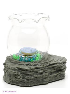 Набор аквариум Amico. Цвет: зеленый, прозрачный