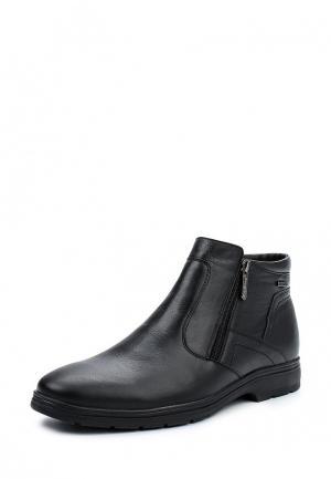 Ботинки классические Shoiberg. Цвет: черный