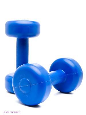 Гантели 2 кг Larsen. Цвет: синий