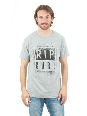 Футболка  OBVIOUS TEE Rip Curl. Цвет: серый