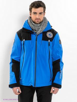 Куртка NAPAPIJRI. Цвет: синий, черный