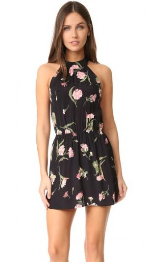 Мини-платье Poppy Flynn Skye. Цвет: ночное цветение
