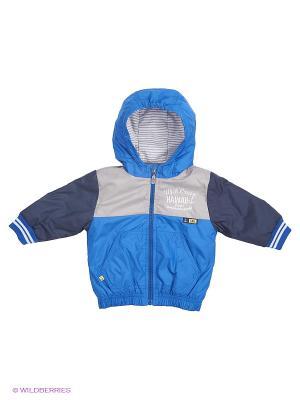 Куртка Wojcik. Цвет: синий, серый, темно-синий