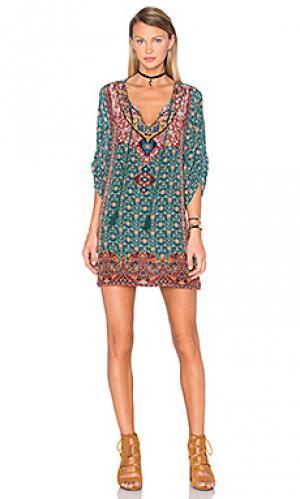 Платье lexi Tolani. Цвет: зеленый