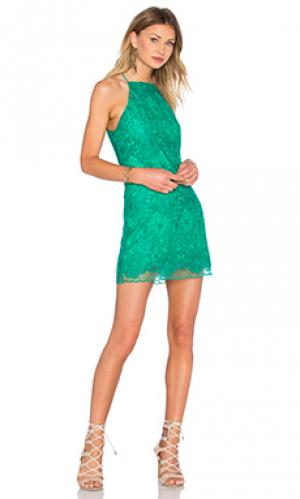 Платье stand by NBD. Цвет: зеленый