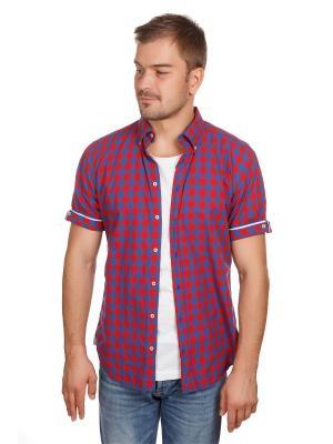 Рубашка Poplin McNeal. Цвет: лазурный, красный