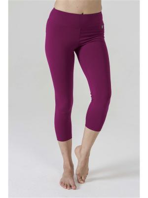 Тайтсы yogadress. Цвет: сливовый, лиловый