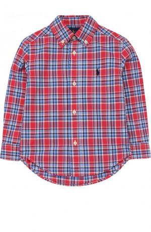 Хлопковая рубашка с принтом и воротником button down Polo Ralph Lauren. Цвет: красный