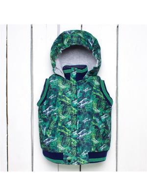 Жилет Arctic Kids. Цвет: темно-синий, белый, зеленый