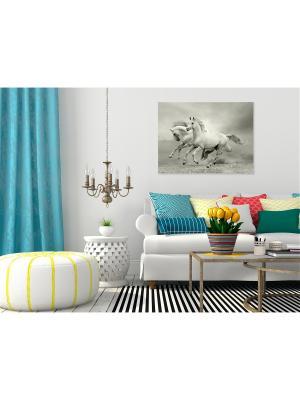 Картина Лошадиная рысь Сирень. Цвет: серо-голубой, светло-голубой, светло-серый