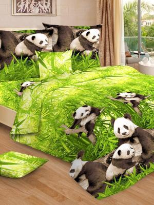 Комплект постельного белья, евро, бязь, пододеяльник на молнии Letto. Цвет: зеленый,коричневый,бежевый