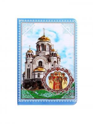 Обложка для паспорта Bizon. Цвет: голубой