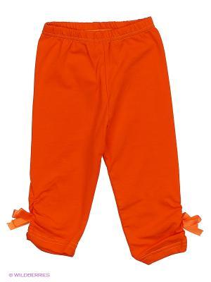 Бриджи SOFT SECRET. Цвет: оранжевый