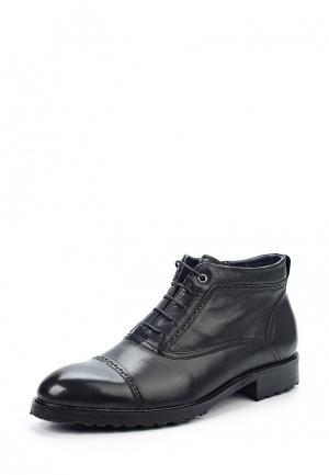 Ботинки Vera Victoria Vito. Цвет: черный