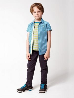 Рубашка VILATTE. Цвет: голубой, белый