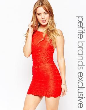 Tiger Mist Petite Облегающее платье c бретельками и завязками на шее. Цвет: красный