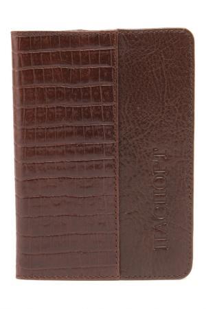 Обложка IVS. Цвет: коричневый