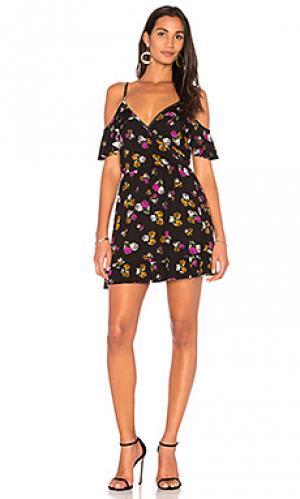 Мини-платье с цветочным рисунком joni Clayton. Цвет: черный
