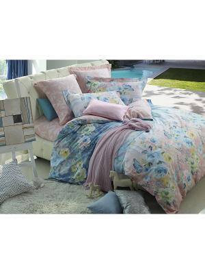 Комплект постельного белья ДУЭТ сатин, рисунок 588 LA NOCHE DEL AMOR. Цвет: бежевый