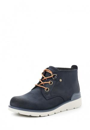 Ботинки JAYDEN ECCO. Цвет: синий