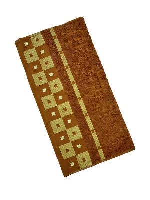 Махровое полотенце Aisha. Цвет: коричневый