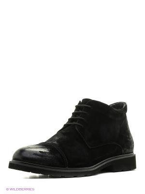 Ботинки CARLO BELLINI. Цвет: черный