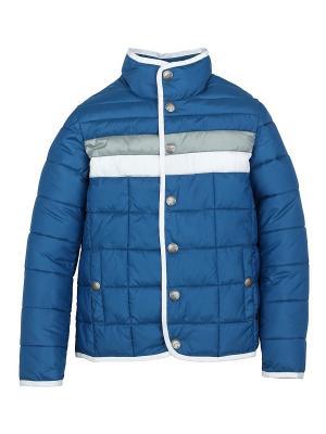 Куртка Pulka. Цвет: голубой