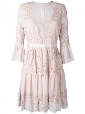 Кружевное платье Perseverance London. Цвет: розовый и фиолетовый