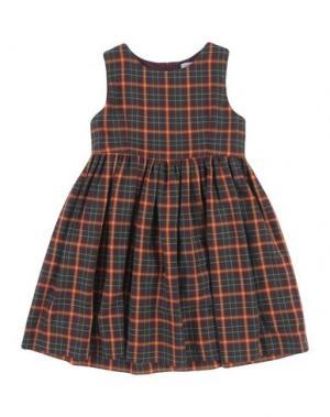 Платье DOLCE & GABBANA. Цвет: красно-коричневый